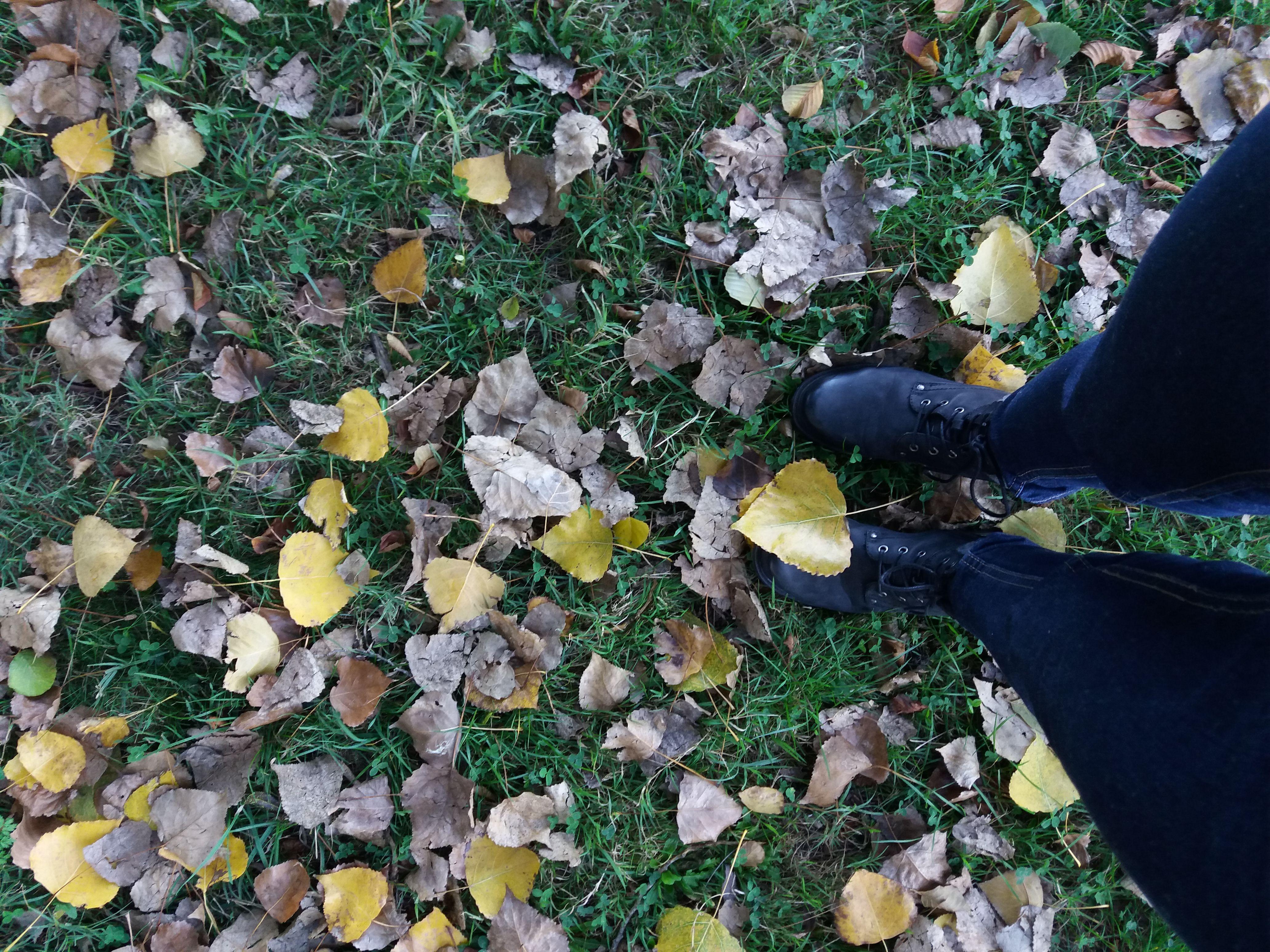 chaussure_balade
