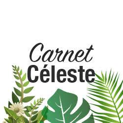Carnet_celeste