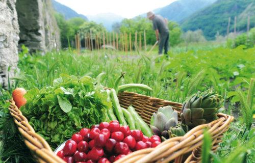 Manger local ou manger bio ?