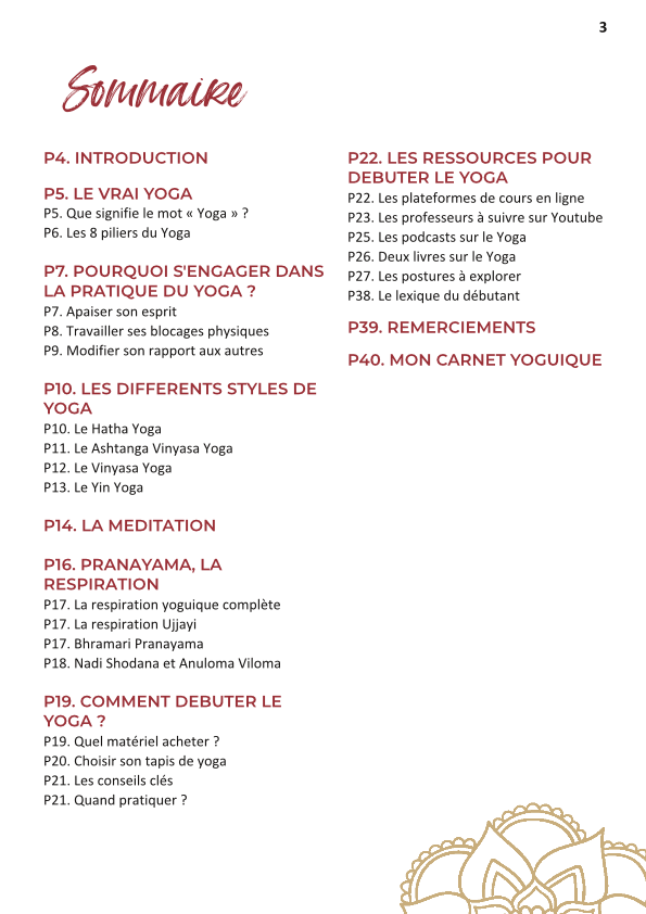 sommaire ebook je commence le yoga