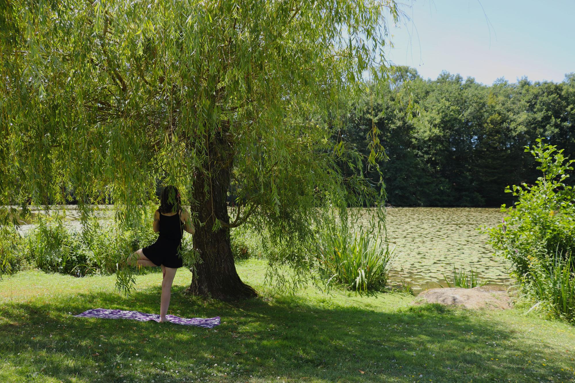 yoga posture de l'arbre
